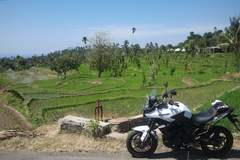Reisen und Touren: On Road von Bali nach Java