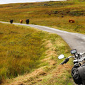 Trip/Tour: Scotlands Highlands and Northern Ireland without guide